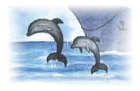 delfiny_a