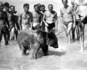Fot. ze zbiorów rodziny Działoszyńskich