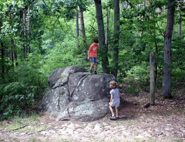 Koźli Kamień w okolicy Sulęcina